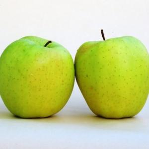 Apfel Golden Selicius BIO